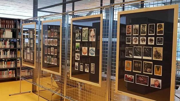 Vědecká knihovna UJEP vystavuje do konce února severočeské tvůrce ex libris.