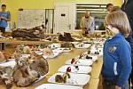 Mykologický den v ústeckém muzeu