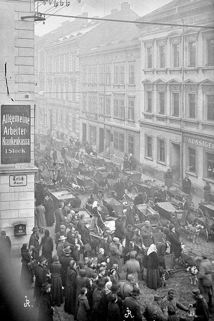 Rekvizice psů vdnešní Brněnské ulici vÚstí nad Labem vroce 1916.