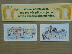 Přestože se ústecká zoo potýká s nedostatkem financí, připravuje novou expozici tučňáků.
