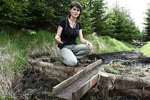 Gabriela Pourová vysvětluje, jak na Cínoveckém hřbetu vznikala rašelinová pole.