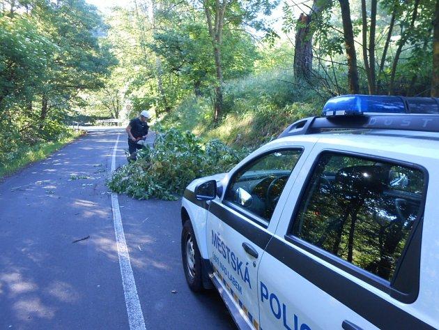 Hlídka strážníků ze skupiny operačního zákroku spadlý strom rozřezala a zvozovky odklidila.