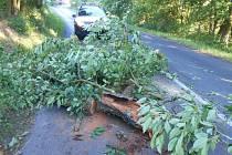 Hlídka strážníků ze skupiny operačního zákroku spadlý strom rozřezala a z vozovky odklidila.