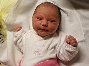 Ellen Hlaváčová se narodila v ústecké porodnici 22. 2. 2017 (18.40) Janě Ryšánkové. Měřila 52 cm, vážila 3,63 kg.