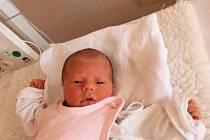Veronika Růžičková se narodila v ústecké porodnici 21.6.2016 (14.15) Monice Makovičkové. Měřila 44 cm, vážila 2,13 kg.