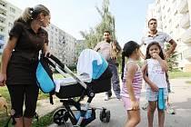 V Mojžíři si místní obyvatelé z panelových domů stěžují na nepořádek a rámus, který zde dělají Romové, kteří se sem houfně stěhují z okolních ústeckých čtvrtí. Místní Romové, kteří tu bydlí od narození a i oni si stěžují na nově přistěhované Romy