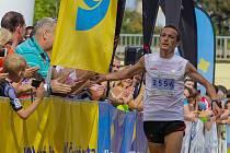 JOSEF PROCHÁZKA na půlmaratonu v Plzni.