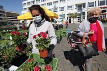 Farmářské trhy v Ústí nad Labem.