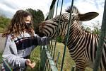 Zoologická zahrada v Ústí nad Labem po koronavirové krizi znovu otevřela. Návštěvníků ale nebylo mnoho a v rozsáhlém areálu se hodně rozptýlili.