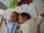 Štěpán Klein a Eliška Kleinová se narodili Zdeňce Kleinové z Děčína 6. července v 22.45/22.46 hod. v ústecké porodnici. Měřili 40 cm a vážili 1,62/1,58 kg.