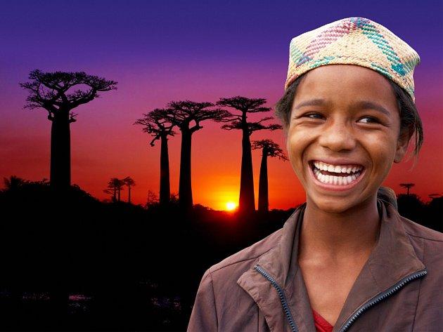 Majestátné baobaby, jeden zdivů Madagaskaru.