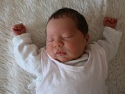 Sára Frejchalová se narodila v ústecké porodnici 4.7. 2017(13.06) Petře Frejchalové. Měřila 46 cm, vážila 2,88 kg.