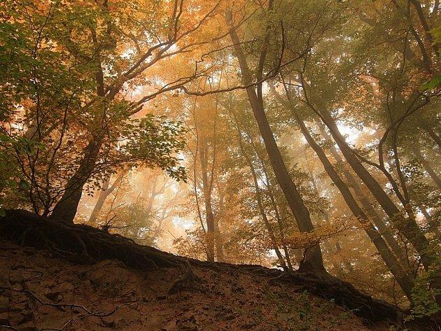 16. Inverzní mlhovinou vzhůru na slunečnou Dlouhou Louku.