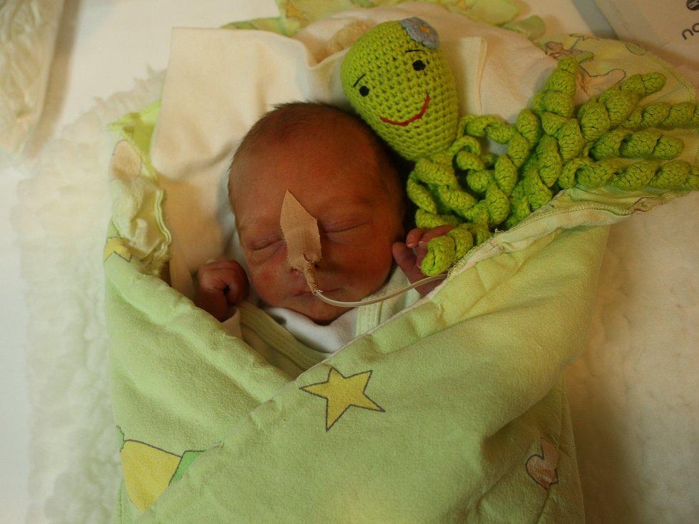 Tomáš Mleziva se narodil Veronice Vernerové z Ústí nad Labem 9. listopadu ve 13.27 hod. v ústecké porodnici. Měřil 42 cm a vážil 1,7 kg