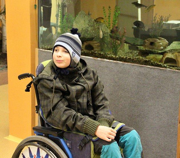 Velké akvárium srybičkami je tradiční kulisou voleb vaule ZŠ Vojnovičova ve Všebořicích. Uprezidentských voleb uněj fotoaparátu zapózoval jedenáctiletý Jan