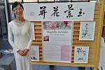 Výstava ukáže nástroje a postupy tradičního čínského léčení.