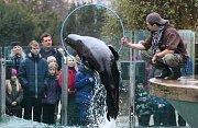 Program v ústecké zoologické zahradě. Archivní foto