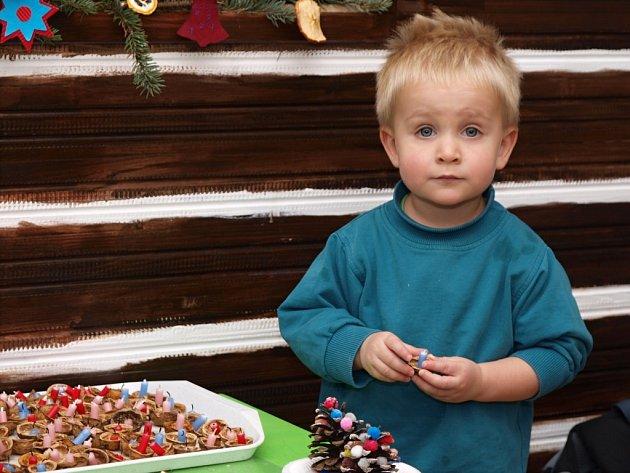 Stovky lidí si nenechaly ujít sobotní třetí ročník Vánočních trhů v ústeckém muzeu.