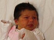 Nicol Jirásková se narodila v ústecké porodnici 12.12.2016 (21.29) Soně Kudrnové. Měřila 50 cm, vážila 3,78 kg.