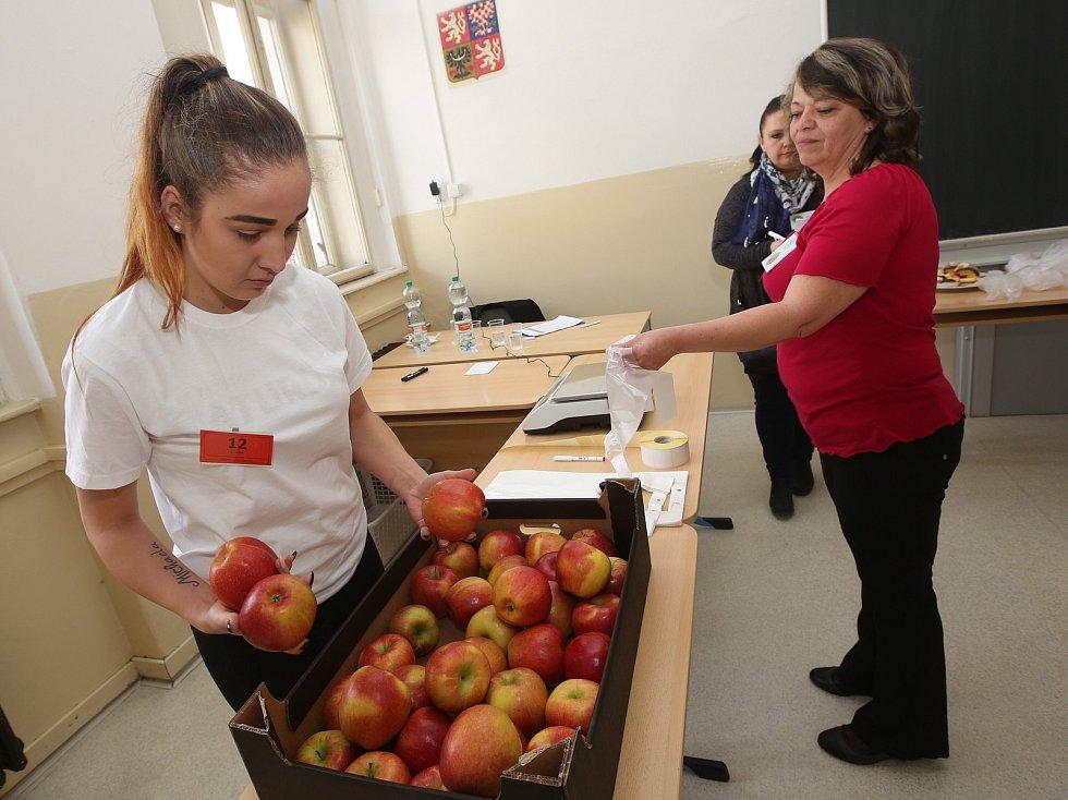 Na střední škole v Krásném Březně proběhla celostátní soutěž oboru prodavač.