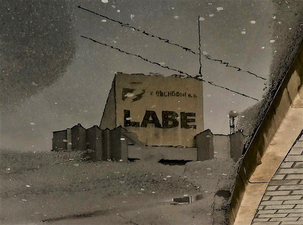 Ústecký fotograf Martin Vodňanský si oblíbil snímky zachycující dominanty města nad Labem v odrazu kaluže. Říká jim loužovky. Na snímku je obchodní dům Labe.