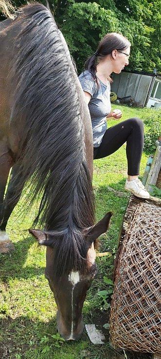 Opuštěná zvířata, která našla nový domov v Čeřeništi, navštívila známá herečka Ivana Chýlková.