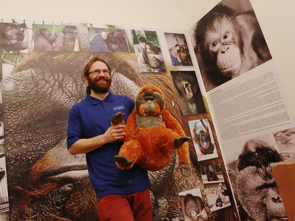Výstava Milování v přírodě v Městském muzeu v Ústí nad Labem.