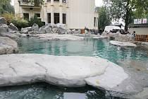 Bazén tuleňů v ústecké zoo.