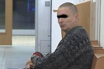 Za sexuální zneužívání dvou nezletilých dívek, s nimiž je v příbuzenském vztahu, půjde Václav P. (1967) z Ústí nad Labem na osm let do vězení s ostrahou.