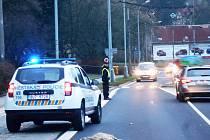 Osobí auto srazilo ve Stříbrnické ulici srnu.