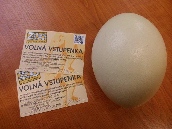 Volný vstup do ZOO a obří vejce