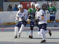 Hokejbalisté Elby DDM doma prohráli s Plzní 0:3.