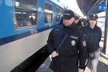 Cizinecká policie hledala ve vlacích nelegální migranty.