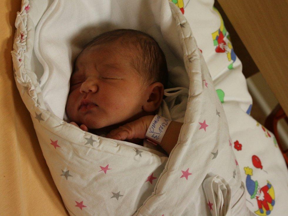 Victoria Anna Ciomaga se narodila v ústecké porodnici 16. 2. 2017 (0.24) Barboře Ciomaga. Měřila 53 cm, vážila 3,66 kg.