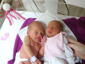 Matěj a Natálie Kopčanovi se narodili Kláře Kopčanové z Libouchce 25.ledna v 8.34 / 8.35 hod. v ústecké porodnici. Měřili 45 / 40 cm a vážil 2,37 / 1,75 kg