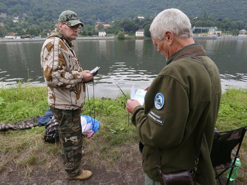 Rybářská stráž a policie kontrolovala rybáře při lovu na březích Labe mezi Brnou a Píšťany.