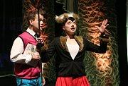 Poslední letošní premiérou Činoherního studia je pohádka Pinocchio.