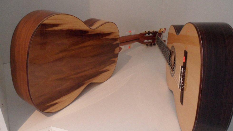 Tulipánová kytara. Název má podle netradičního zbarvení dýhy.