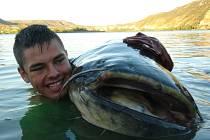 Martin Krupička má se sumcem chyceným na řece Ebro řadu fotografií a videí. Bude na něho vzpomínat celý život. Doufá, že v řece, kam ho pustil zpět, obří ryba ještě o něco povyroste.
