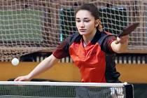 Stolní tenis 1. liga - hráčky SKP Sever Ústí n/L v utkání proti Hrádku zvítězily 9:1. Tereza Ajdini