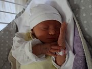 Nikola Malá se narodila v ústecké porodnici 17. 5. 2017(12.36) Barboře Malé. Měřila 44 cm, vážila 2,48 kg.
