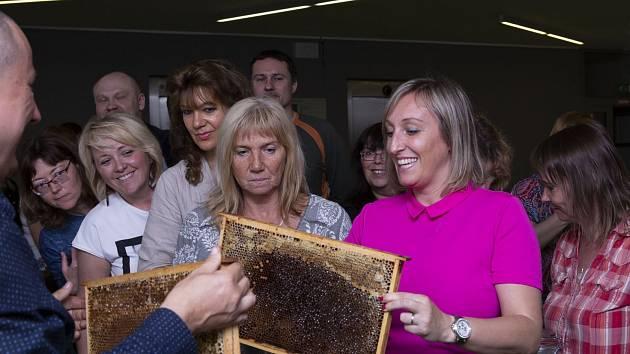 Na ústecké univerzitě vytočili svůj první med