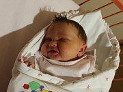 Šárka Pochobradská se narodila v ústecké porodnici 21.11.2016 (8.19) Jitce Pochobradské. Měřila 51 cm, vážila 3,66 kg.