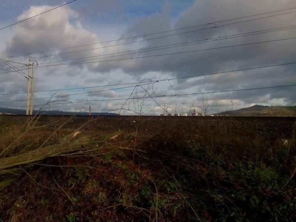 Spadlé stromy omezují provoz na trati do Děčína.