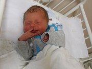 Viktor Dohnálek se narodil Vandě Dohnálek Ottenschlägerové z Košťan 7.ledna v 6.22 hod. v ústecké porodnici. Měřil 49 cm a vážil 2,95 kg
