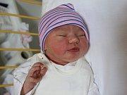 Laura Macková se narodila Martině Mackové z Ústí nad Labem 3. prosince ve 2.36 hod. Měřila 52 cm, vážila 4,11 kg