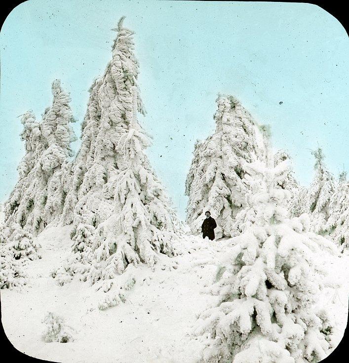 Zima v Olšinkách