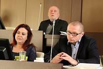 Jednání zastupitelů v Ústí nad Labem, 18. února 2019