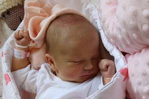 Amálie Bärnt se narodila Nikol Čermákové z Ústí nad Labem 3. srpna ve 12.53 hodin v Ústí nad Labem. Měřila 53 cm, vážila 3,42 kg