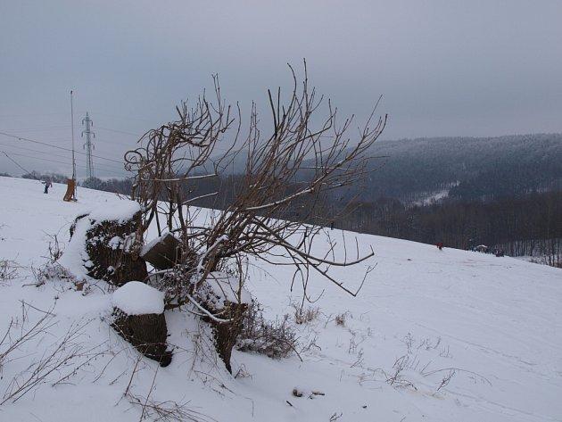 V Malečově jezdí vleky od 9.00 do 16.00 hodin , celodenní jízdné je 150 korun. Večerní lyžování je v pátek od 18.00 do 20.00 hodin a stojí 100 korun.